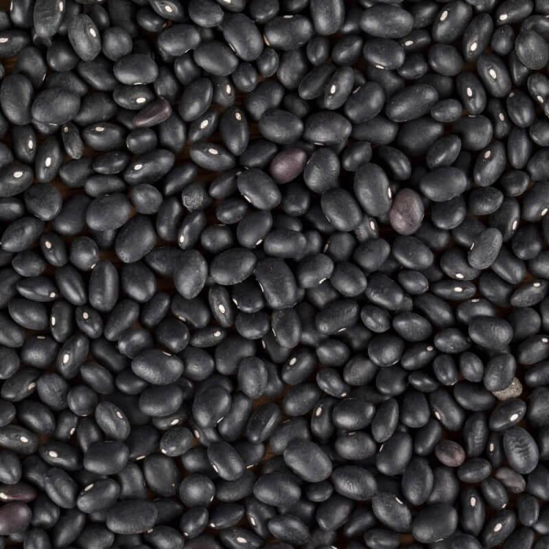 Fazole malá černá
